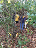 Cub Scout Challenge: A Lesson in Serving